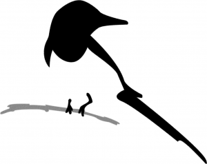 Cori Vidae Logo